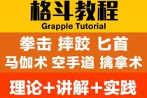 【教程9】格斗擒拿防身技巧视频教程教学